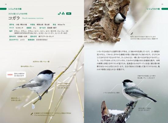 yacho_book-8